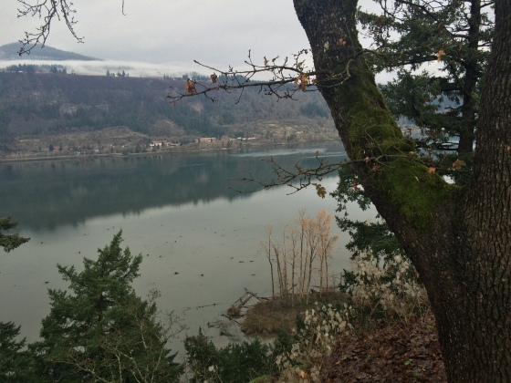 Columbia River from Vagabond Lodge